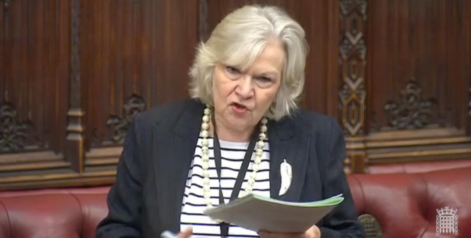 Lords quiz government on UK replacement for Erasmus