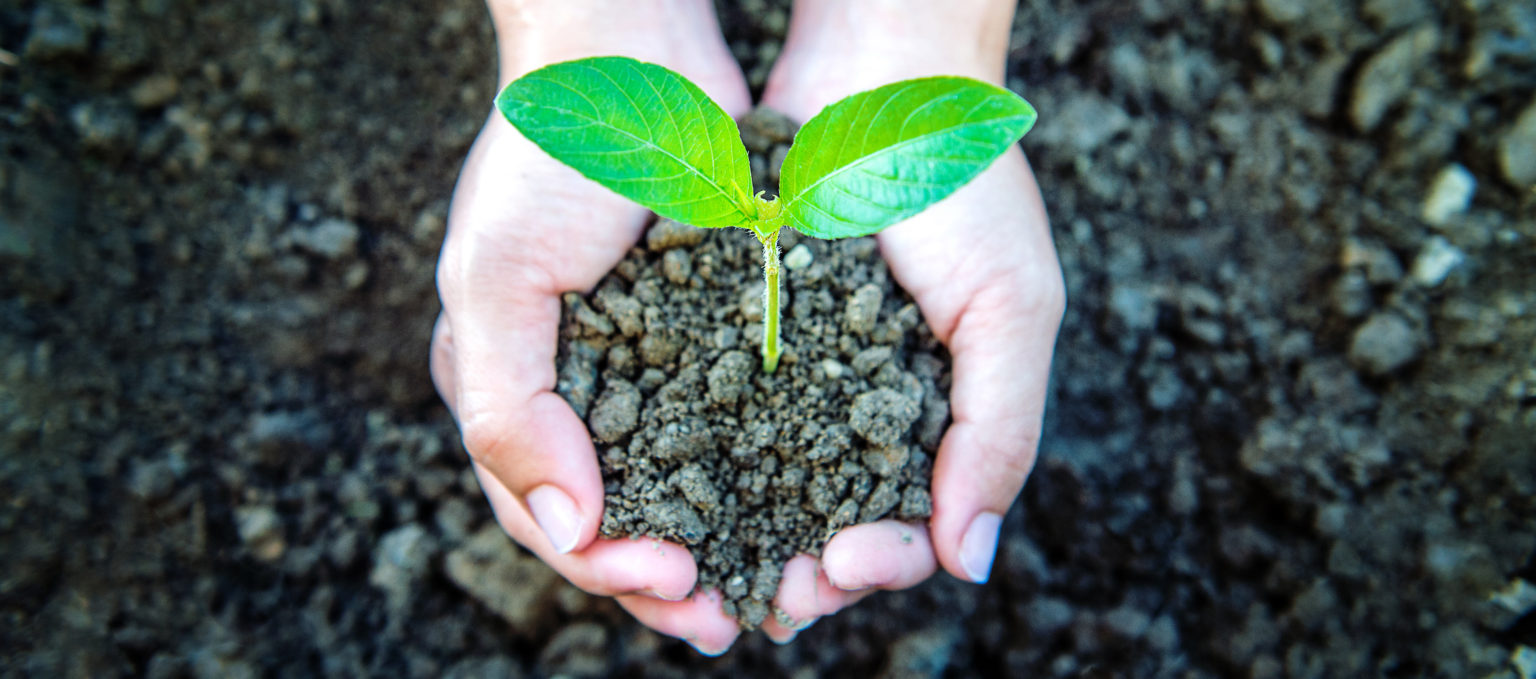 Sustainability-in-education-Advance-HE-and-QAA-publish-new-guidance