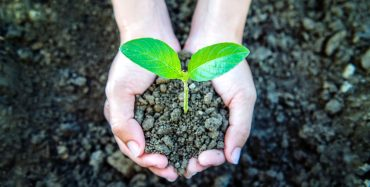 mprove sustainability teaching and cut emissions, UCU and NUS tell universities